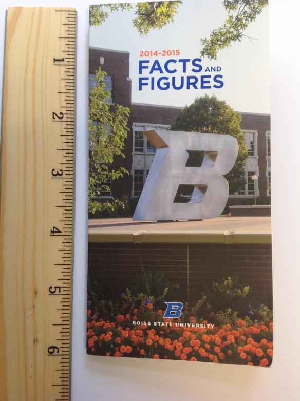 BSU data brochure3